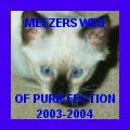 My website won the Meezers Award of Purr-fection!